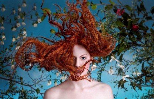 Foto ilustrativa de cuidados com os cabelos