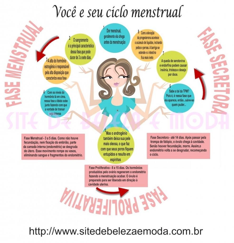 Infográfico para entender as três fases do ciclo menstrual