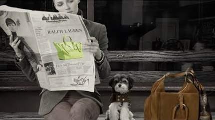 ralph lauren lança acessórios em prol de cães carentes