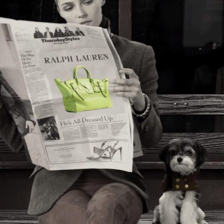 foto de divulgação ralph lauren lança acessórios em prol de cães carentes
