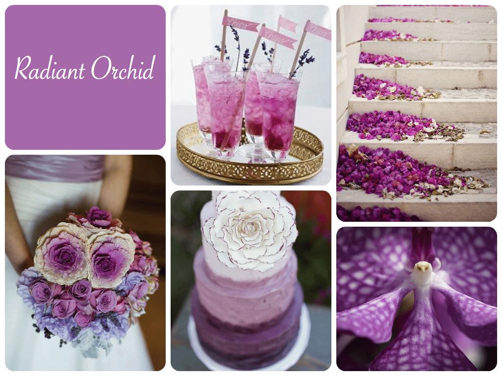 Radiant Orchid é tendência para o casamento colorido