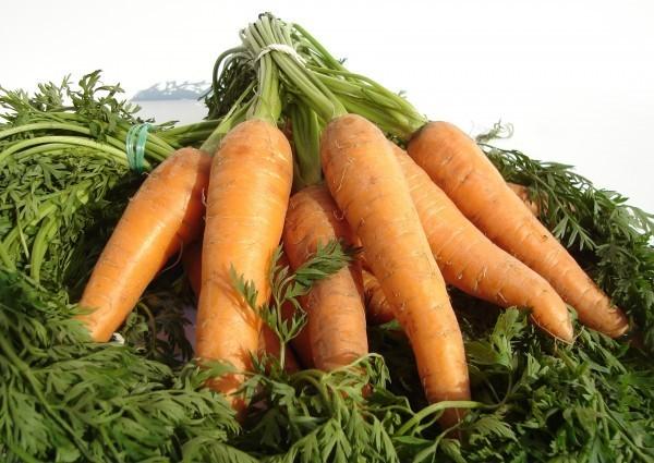 Betacaroteno da cenoura ajuda no bronzeado dos sonhos