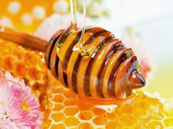 babosa com mel para hidratar o cabelo