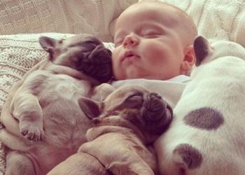 Criança dormindo com cãozinho