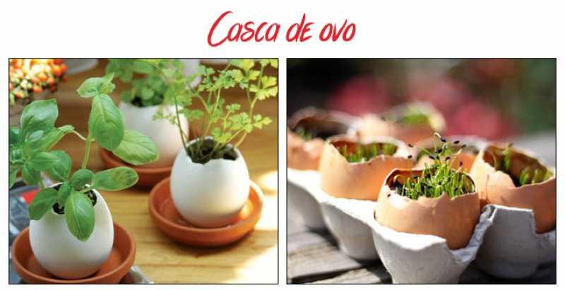 Hortas e jardins com casca de ovo