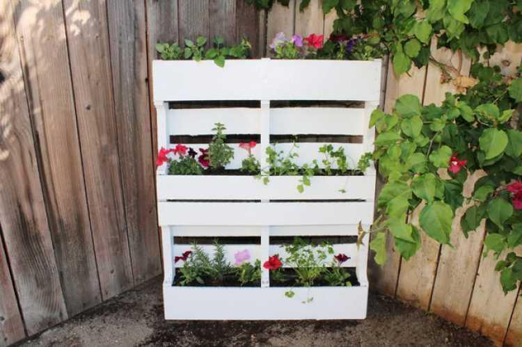 quintal jardim vertical:13 ideias incríveis para decorar seu quintal