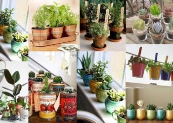 7 Maneiras Criativas de Fazer Vasos Coloridos Para Suas Plantas e Flores