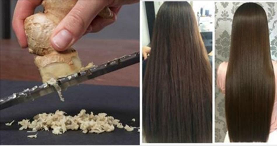 como usar o gengibre no cabelo para turbinar o crescimento e aumentar o brilho e a maciez