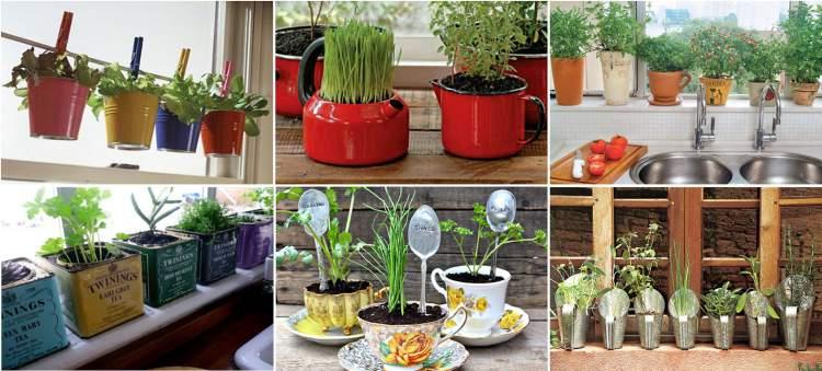 Mini horta ajuda a renovar a cozinha sem a necessidade de reformas