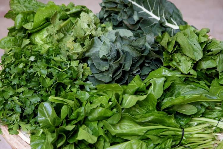 Vegetais folhosos são inibidores naturais da fome