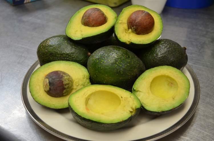 Abacate é fonte de proteínas
