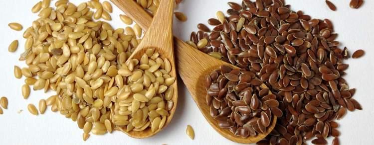 Os grãos de linhaça são inibidores naturais da fome