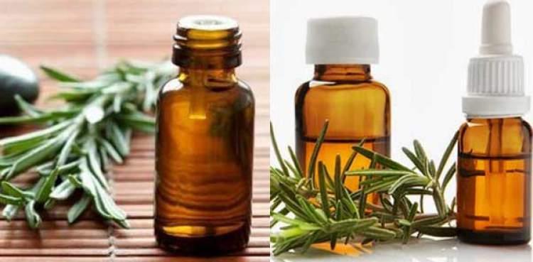 Veja como combater a queda de cabelo com óleo essencial