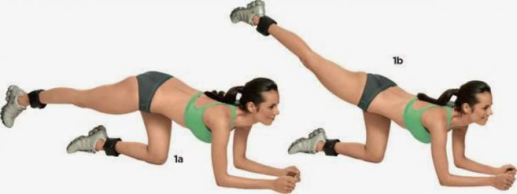 Exercício de quatro apoios estendido para tonificar os glúteos