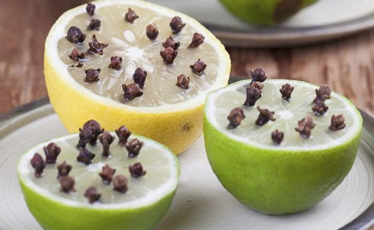 Veja como usar o limão com cravo da índia para afastar as moscas da cozinha