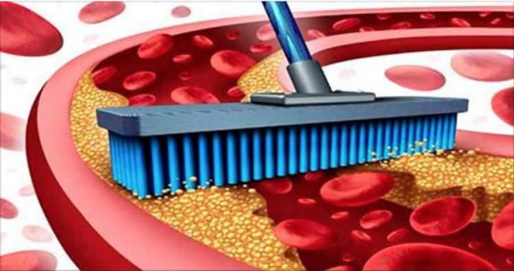 4 alimentos que têm o poder de limpar o colesterol preso nas paredes das artérias