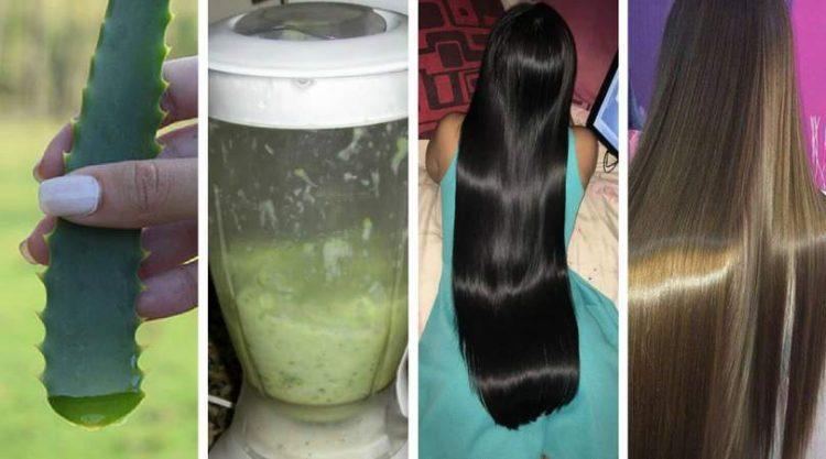 Como fazer banho de brilho de babosa para deixar os cabelos radiantes