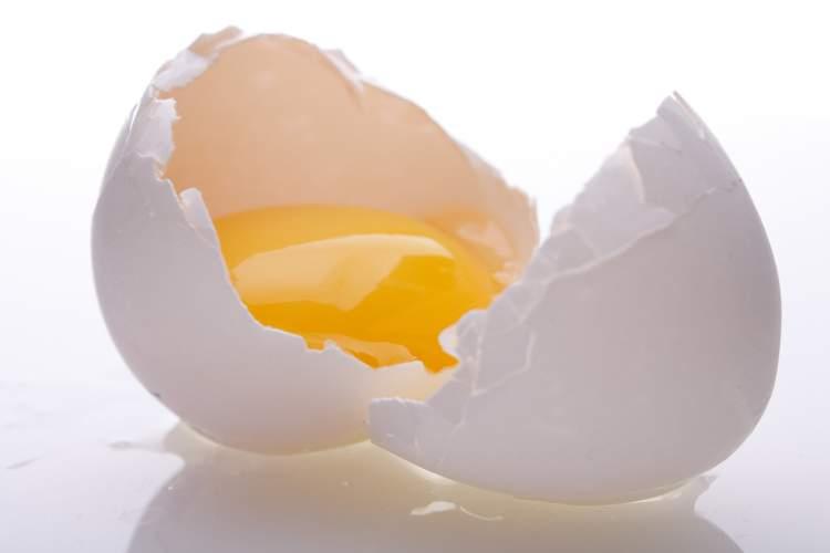 Receita de ovo para dar volume aos cabelos