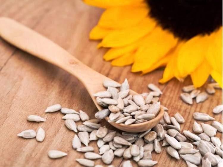 Semente de girassol é um dos alimentos que realmente ajudam a eliminar gordurinhas
