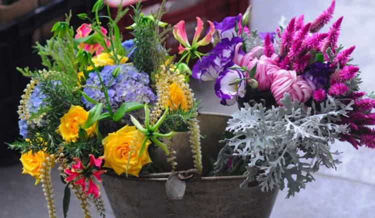 Flores em balde de ferro