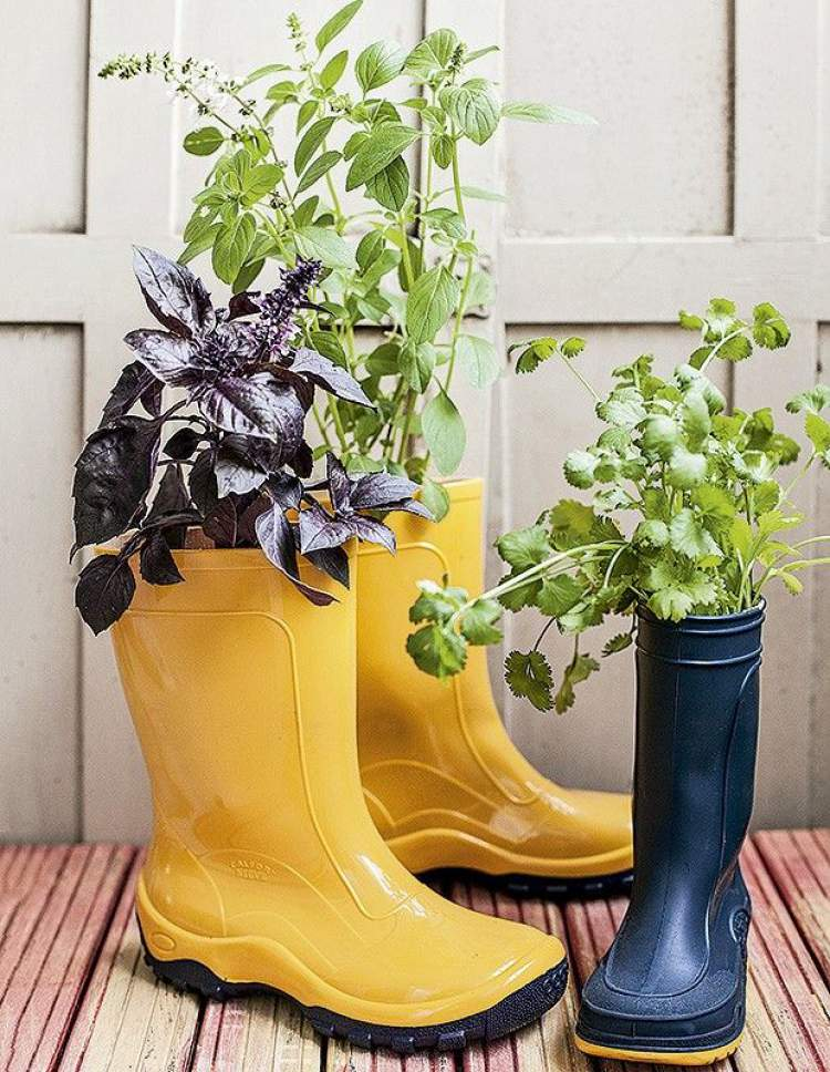 Galochas como vasos para plantar flores