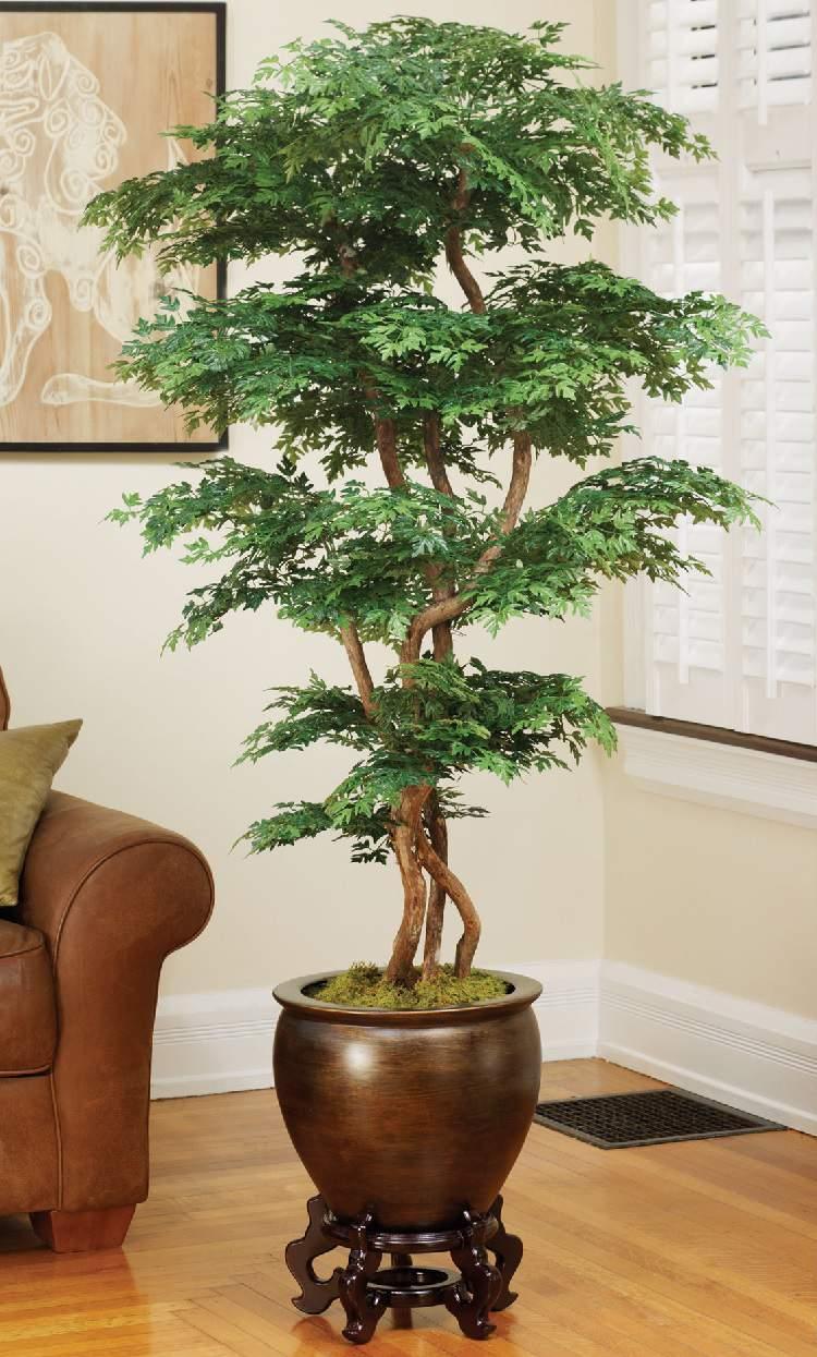 24 plantas perfeitas para decorar o interior da sua casa for Plantas de interior muy duraderas