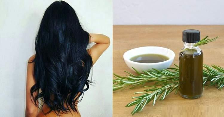 Saiba como usar o alecrim no cabelo para eliminar a queda