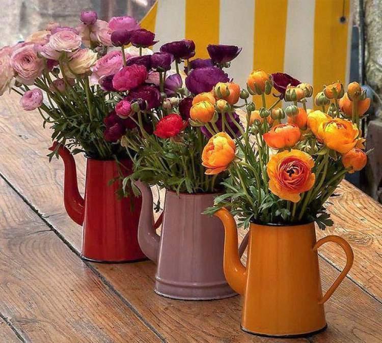 Flores em bule de café