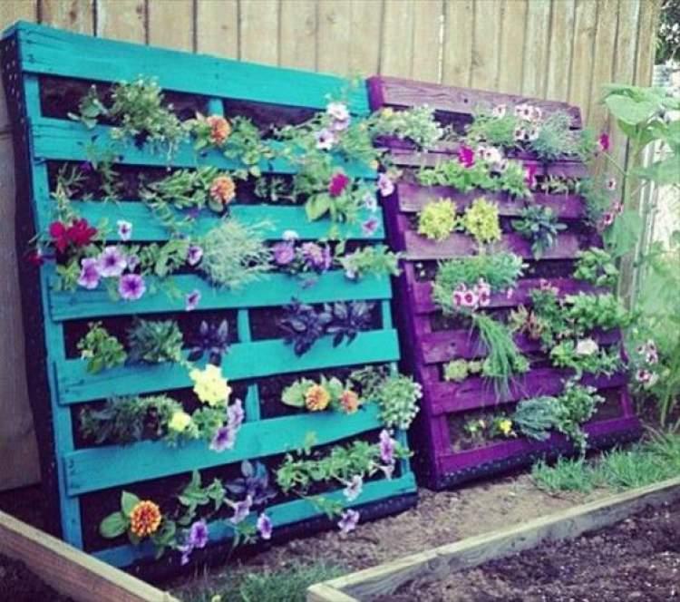 Como fazer um jardim de inverno vertical
