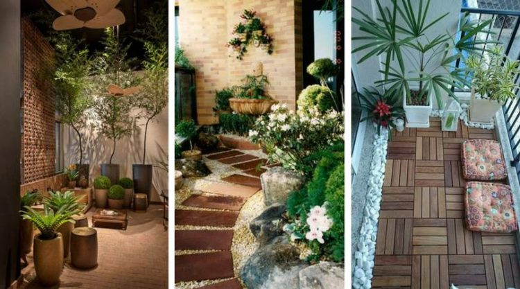 Fotos de jardins de inverno