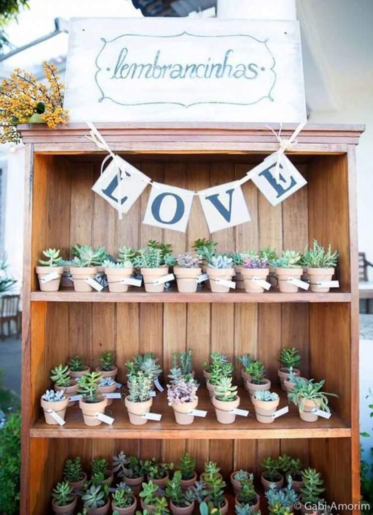 Dicas de plantinhas para dar como lembrancinhas de casamento