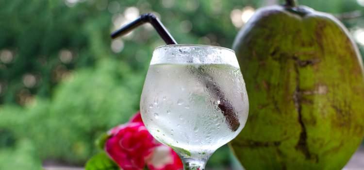 Água de coco ajuda a eliminar gordura em pouco tempo