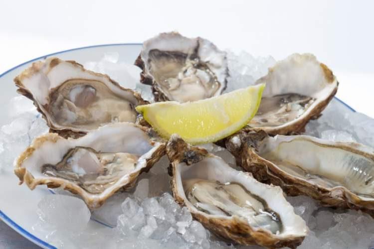 Coma mais ostras para evitar um resfriado