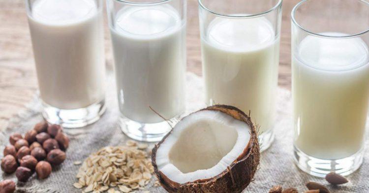 Fontes de cálcio de origem vegetal para você esquecer de vez o leite de vaca