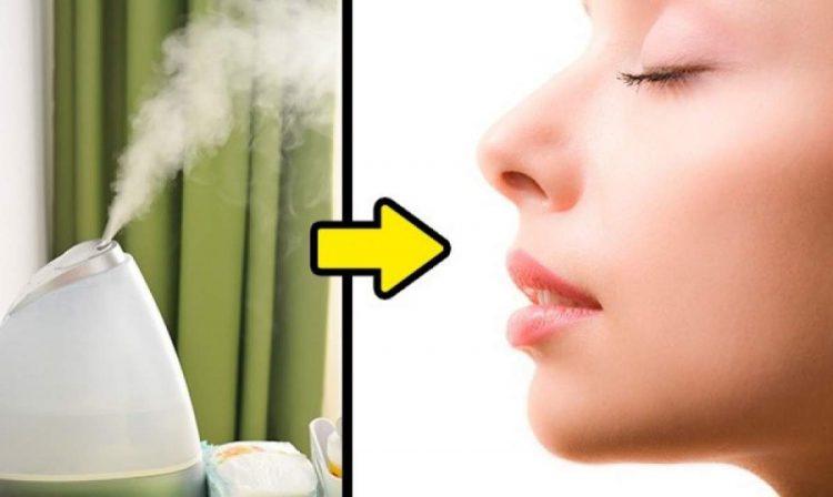 Gotinhas de óleos essenciais no umidificador ajudam a evitar um resfriado