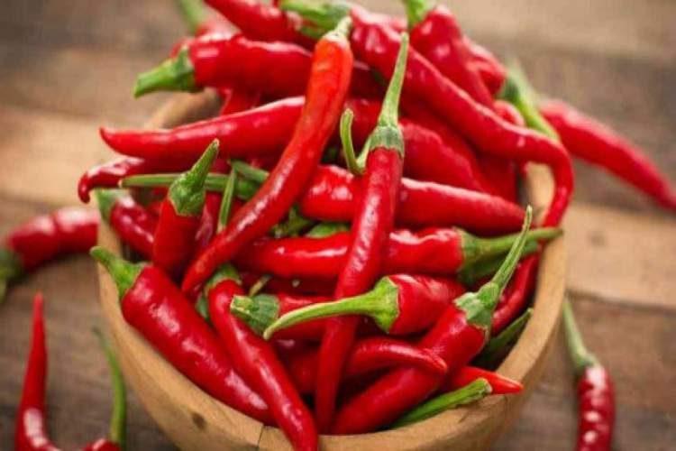 Pimentas e alimentos picantes são inibidores de apetite naturais