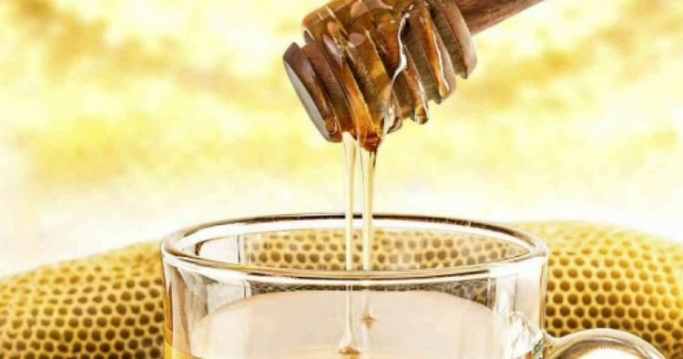 Descubra o que acontece se você beber água com mel em jejum todos os dias
