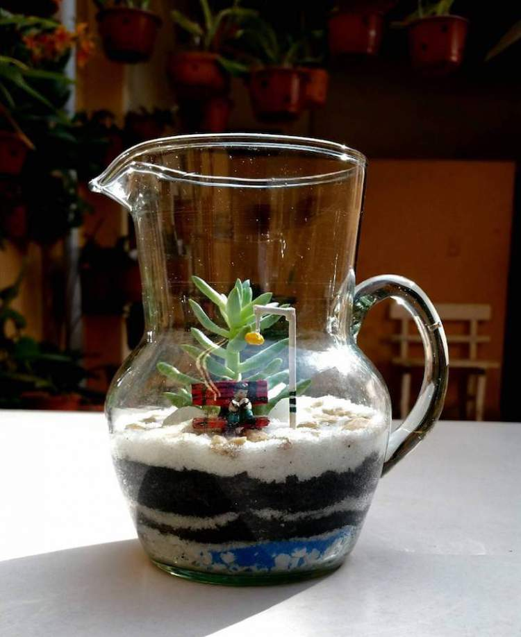 Terrário montado em uma jarra de vidro