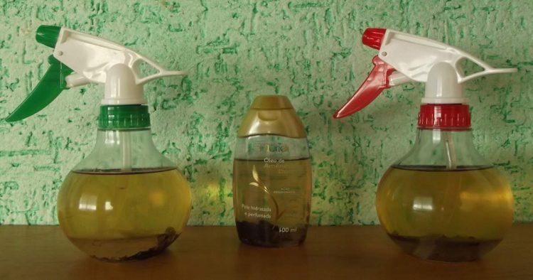 Receitas de repelente caseiro para insetos