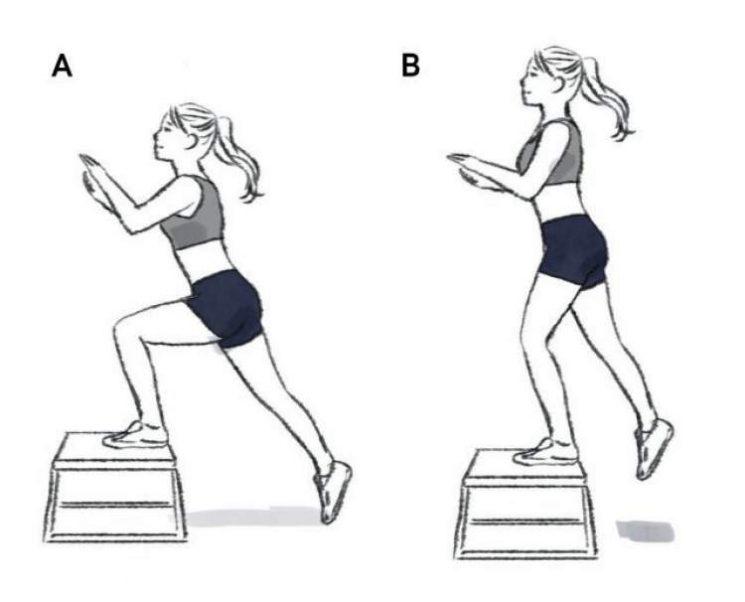 Subida no banco é um dos melhores exercícios para aumentar os glúteos