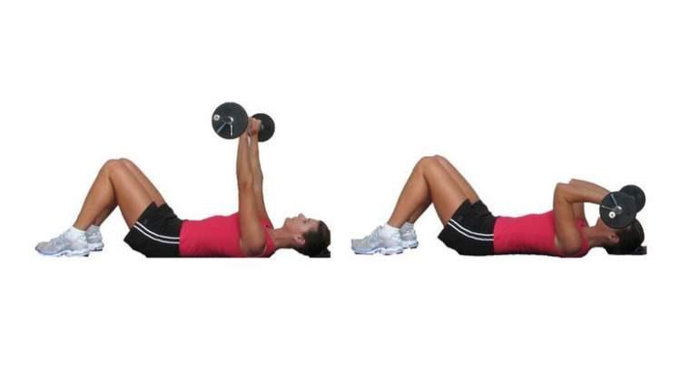 Tríceps testa é um dos melhores exercícios para definir o músculo do tchauzinho