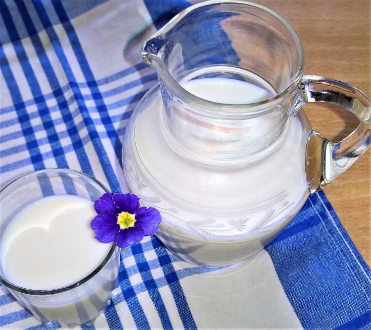 Leite gelado é um dos alimentos que devem ser cortados por quem tem azia ou refluxo