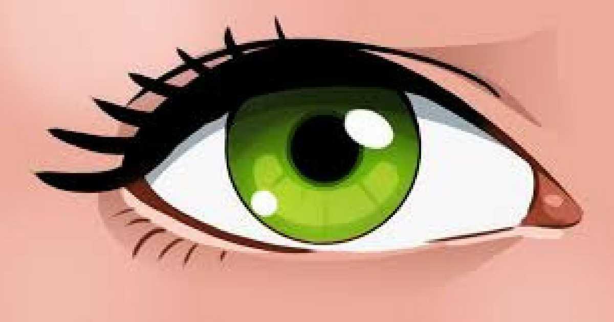 alimentos essenciais para a saúde dos seus olhos
