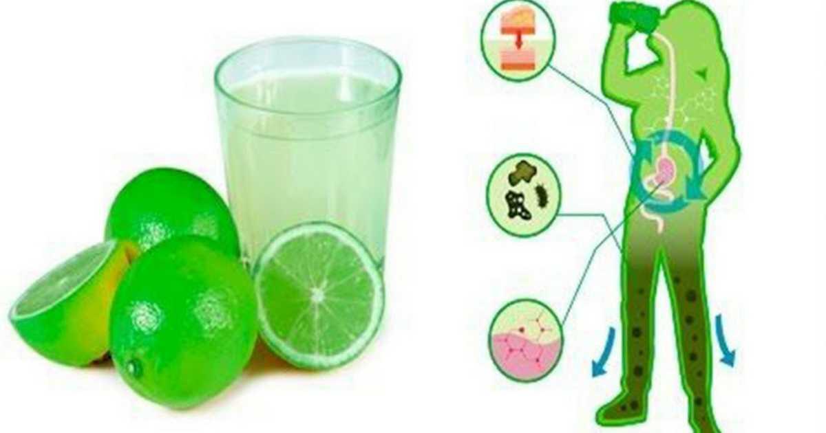 5 coisas que podem acontecer no seu corpo se você beber água de limão todos os dias