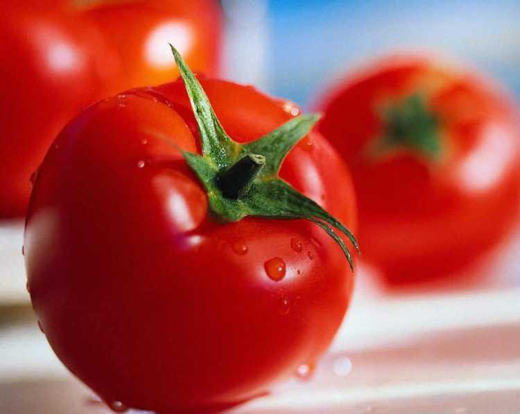 Tomate é um dos alimentos incríveis que vão te ajudar a dar adeus aos pneuzinhos