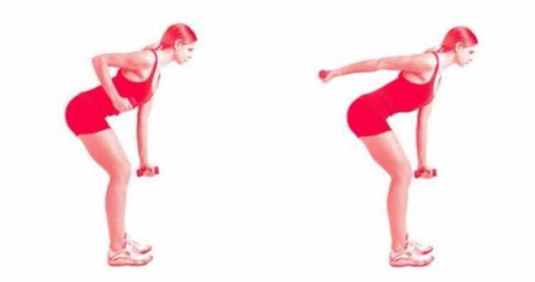 Tríceps coice é um dos melhores exercícios para mulheres com mais de 40 anos.