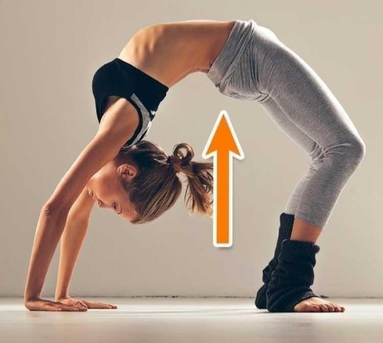 Ponte é um dos melhores exercícios para reduzir as gordurinhas nas costas e cintura
