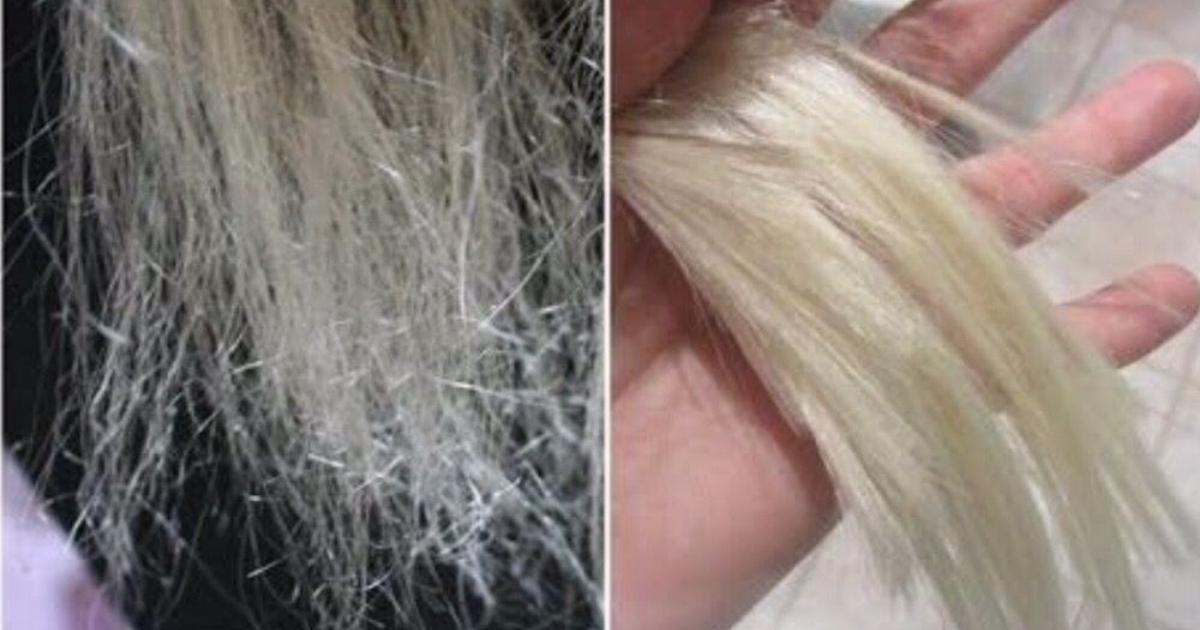 melhores receitas caseiras para cabelos ressecados