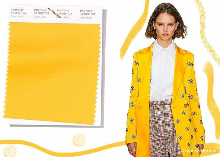 Aspen Gold é uma das cores que são tendências da Pantone 2019