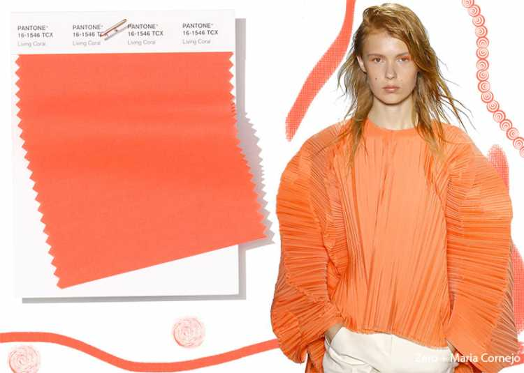 Living Coral é uma das cores que são tendências da Pantone 2019